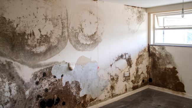 pintar_paredes_con_humedad